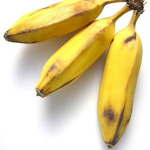 organic-burro-banana